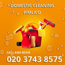Pimlico residential cleaning service SW1