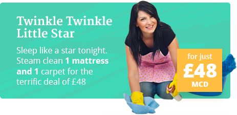 Terrific Deals on Steam Carpet and Mattress Cleaning