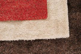 Professional Carpet Cleaning In Kingston Upon Thames Explained